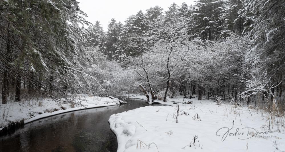 Winter Stream (2) (1 of 1)